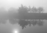 Mlhavé ráno u rybníku